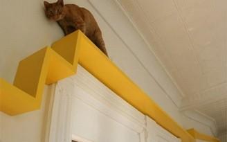 decnet-prateleira-para-gatos-mini