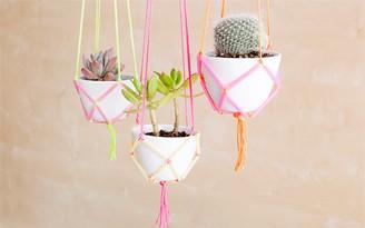decoradornet-diy-jardim-suspenso-neon-00