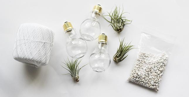 decoradornet-diy-terrario-de-lampadas-02