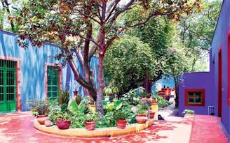 decoradornet-tour-pela-casa-da-frida-kahlo-01