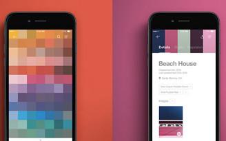 decoradornet-copyright-novo-app-studio-pantone-capa