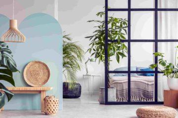 decoracao-online-plantas-ambientes-como-usar-decoradornet